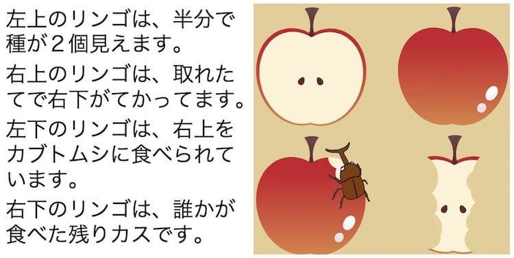 りんごの比較図面